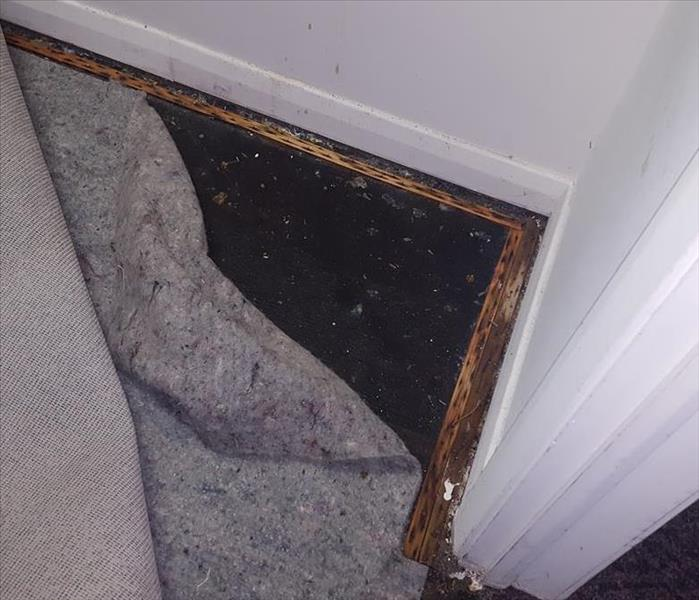 Water Damage and Mold Damage After