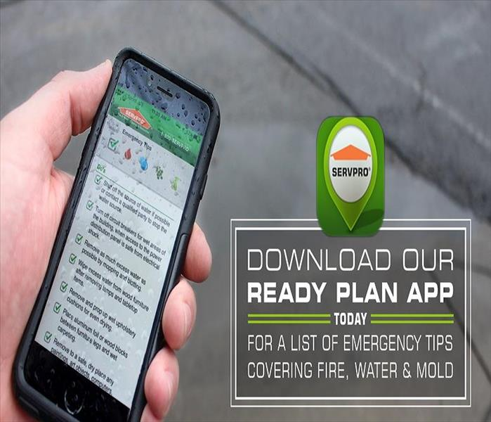 Smartphone showing SERVPRO READY Plan information.