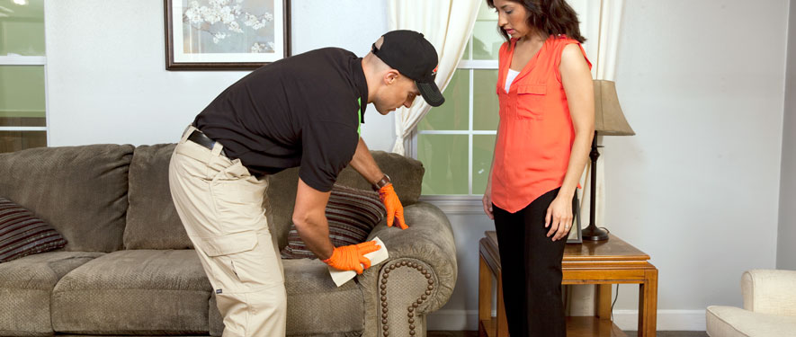 Mahwah, NJ carpet upholstery cleaning